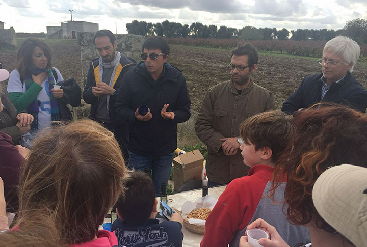 Masseria Monache organizes extra virgin olive oil tasting courses for its guests, also for children.