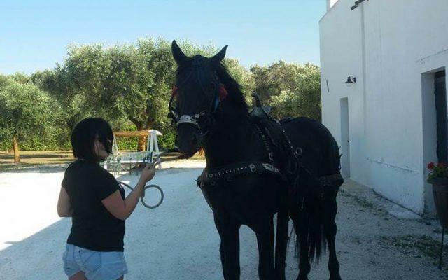 Escursioni a cavallo presso Masseria Monache